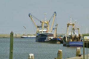 Haven van Lauwersoog krijgt schepen op het duurzame waterstof