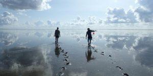 Groot experiment Amelander Zeegat, hoe kust op duurzame manier kan groeien met zeespiegelstijging