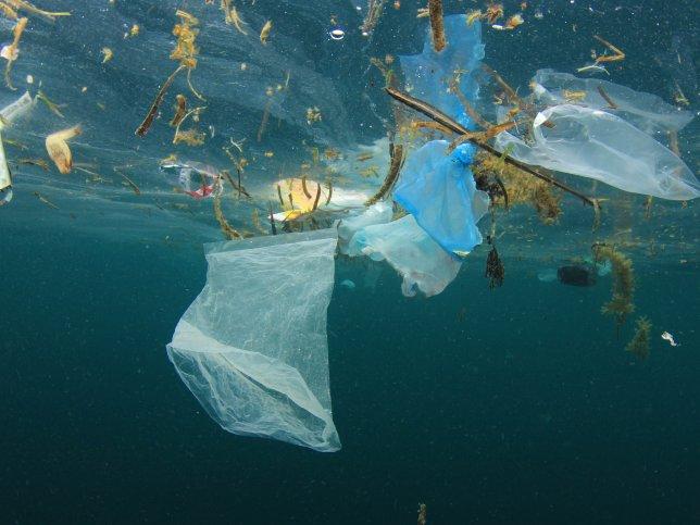 Plastic free ocean