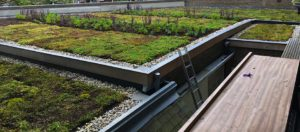 Een groen dak houdt uw huis koeler en ook de stad