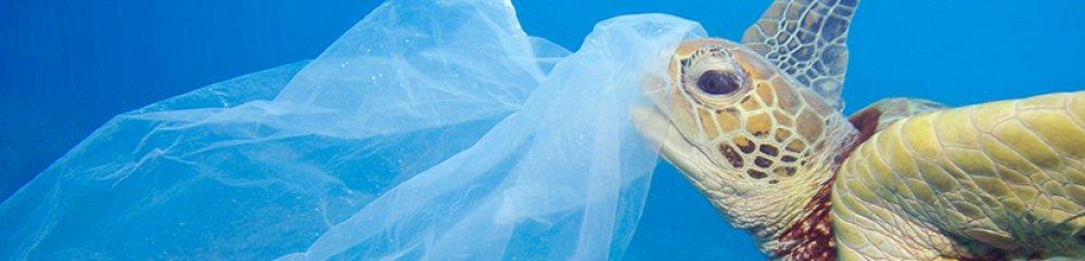 Plastic free ocean 2