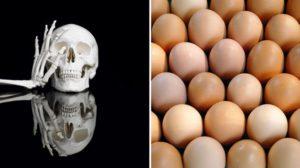 Zijn bot en eierschaal de bouwmaterialen van de toekomst?