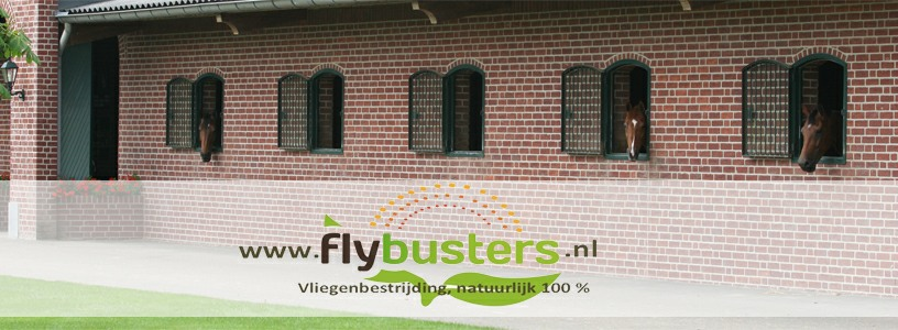 Flybusters foto 2