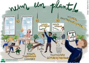 Minder ziekteverzuim op de werkvloer? Neem een plant!