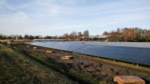Zonneweide in Bergen gaat stroom leveren voor 400 huishoudens