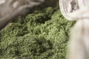 Kunstgrasproducent gaat oude grasmat van klanten recyclen