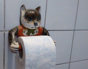 IJburglaan Amsterdam duurzaam geasfalteerd met gerecycled wc-papier