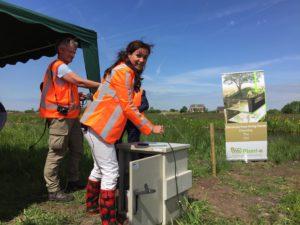 Startsein proef duurzame energie uit bermplanten provincie Utrecht