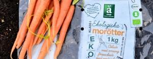 Biobased kunststof: drie bedrijven stimuleren gebruik