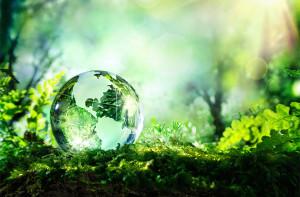 Digitale transformatie helpt bij oplossen klimaatcrisis
