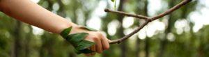 Duurzaamheid en transitie: doet u mee?