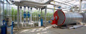 Klimaatneutrale glastuinbouw zonder kolenwarmte