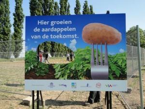 Kansen voor agrarische sector in nieuwe wereldwijde trend ggo-vrij voedsel