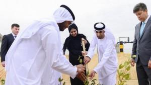 Woestijn gaat voedsel en brandstof leveren