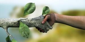 Preventiescan klimaatverandering wijst bedrijven op schadegevolgen weersextremen