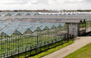 Nieuwe SDE++ regeling 2020 krijgt vorm, ook voor glastuinbouw