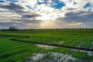Klimaatfonds kiest KiesZon: 80 MWp & 5 locaties