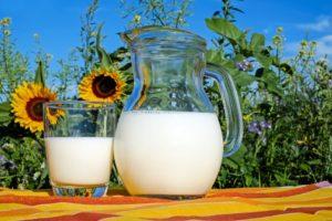 Agroscoopbokaal voor duurzaam ondernemen met 18,1 kg meetmelk-productie uit ruwvoer