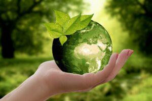 Hoe minimaliseer je jouw ecologische voetafdruk als bedrijf