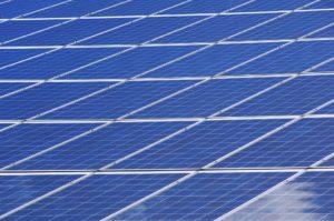 Eerste particuliere Dordtse zonneparken officieel in gebruik