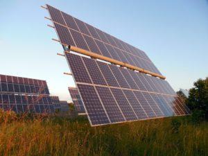 Snelle groei zonneparken biedt kansen voor biodiversiteit en landbouw