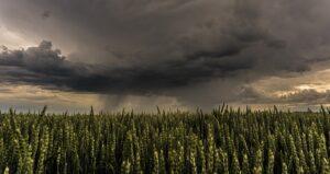 Brede steun voor ambitieus klimaatbeleid als aan vier voorwaarden is voldaan
