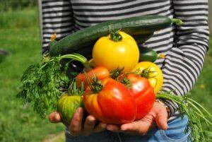 Onderzocht: Nederlander vindt zichzelf duurzaam en wil meer betalen voor duurzamer voedsel
